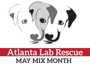 ALR May Mix Month logo